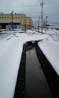 スノースタート2008